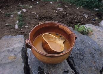 6 Най-странните алкохолни напитки