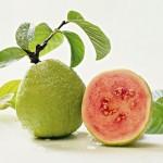 Екзотични плодове – как да не ги опиташ?