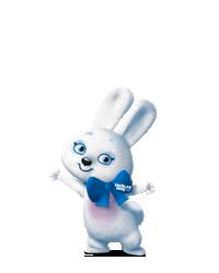 Зайка е талисман на зимната Олимпиада в Сочи през 2014 година